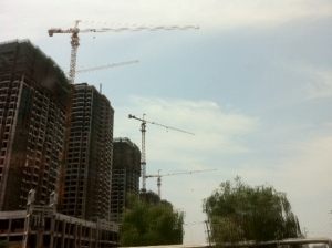 Cranes in China