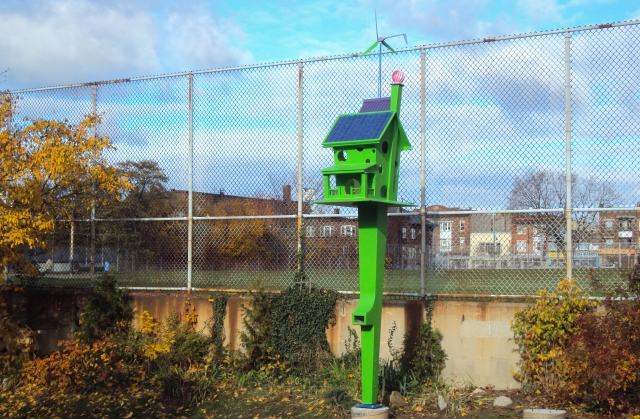 The Birdhouse on Rosemount Avenue