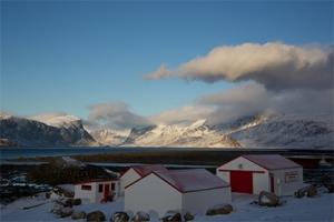 Arctic © John Walker