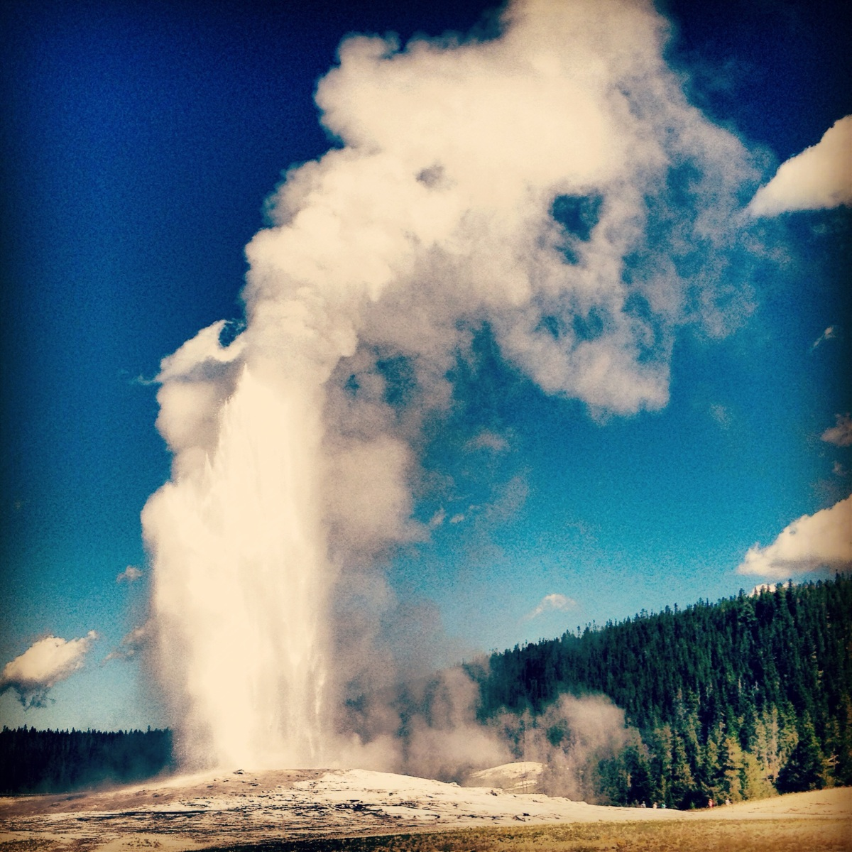 Old Faithful.