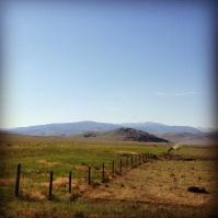 Montana scenery.