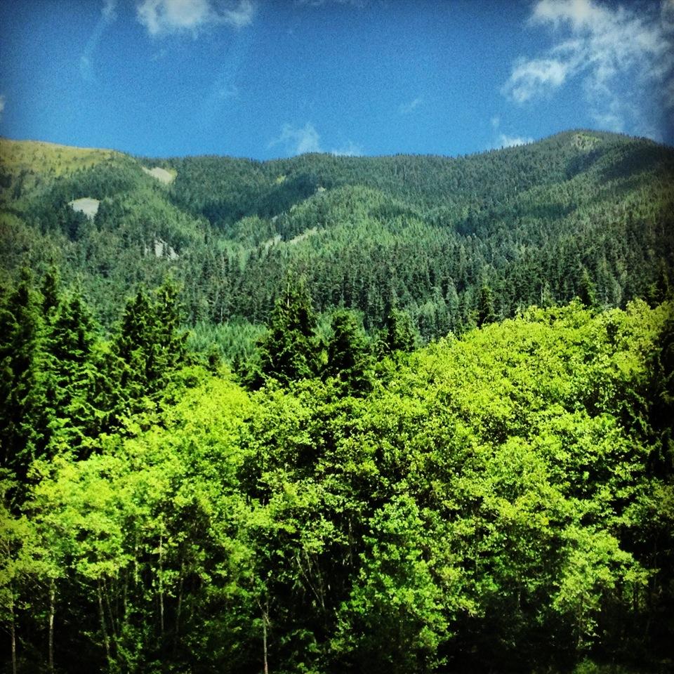 Washington scenery.