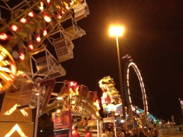Rides at the CNE lit up at night.