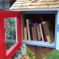 Littlest library door open.