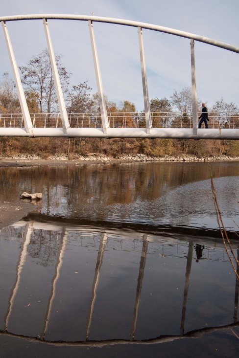 Mimico with reflection