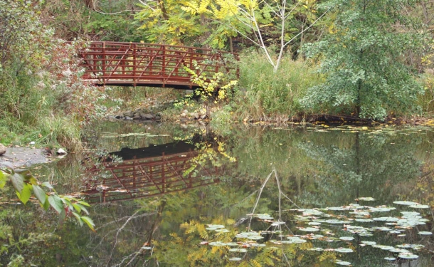 Footbridge over West Pond, Toronto.