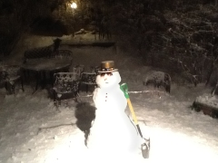 A snowman in New Year's Eve hat in a backyard.