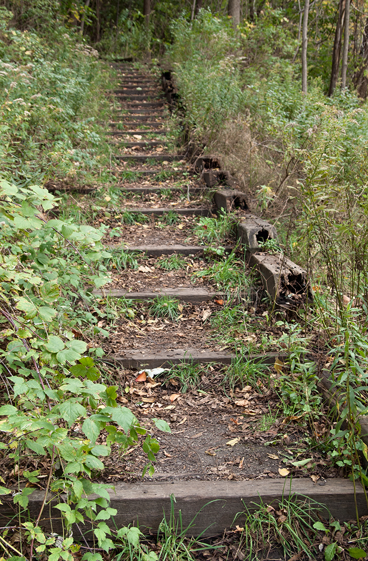 Woodland staircase in Toronto.
