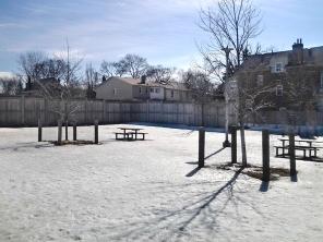 Dog park at Wychwood Barns.