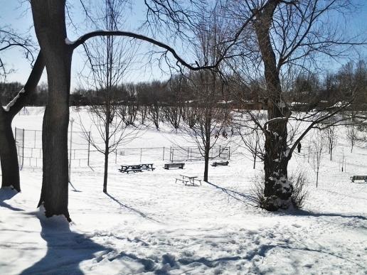 Bickford Park.