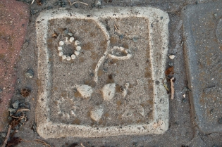 Flower face tile.