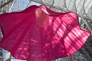 Luminato pink