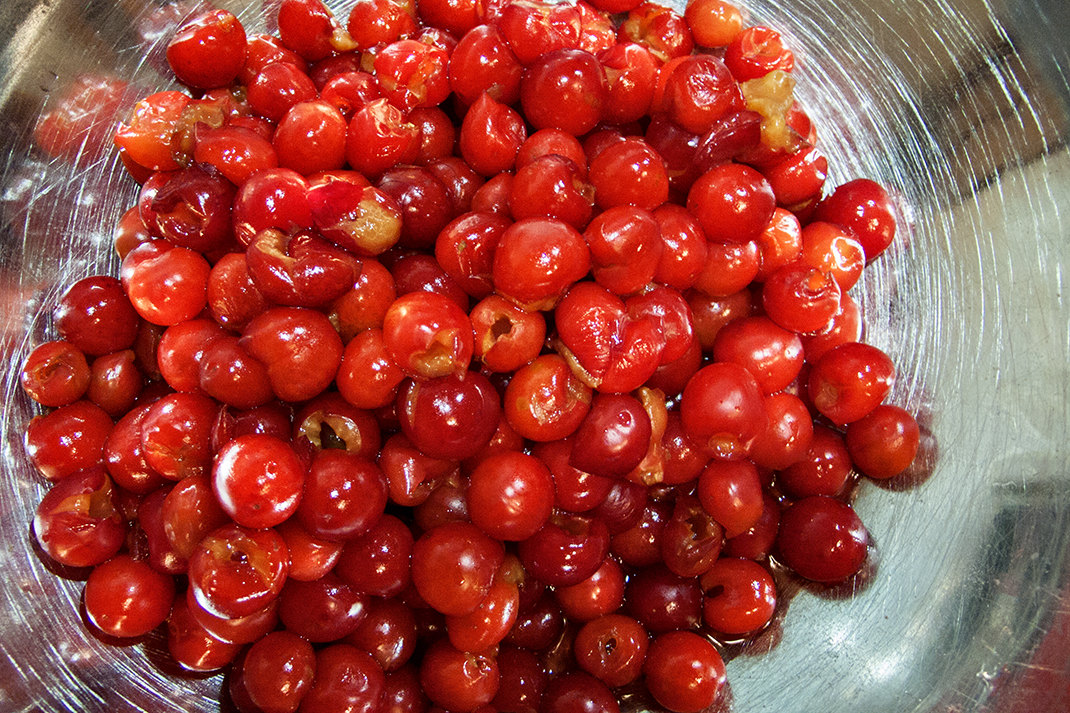 Bowl of pitted cherries.