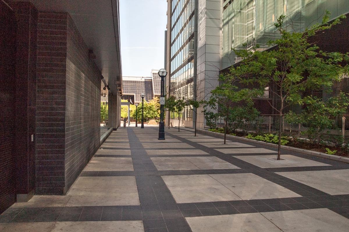 Ritz Carlton walkway.