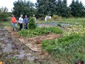 Workgroup standing in garden.