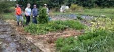 Workgroup in garden.