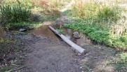 Log across water.