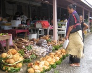 Woman and coconuts at market in Tonga.