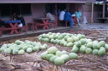 Melons at Tonganese market.