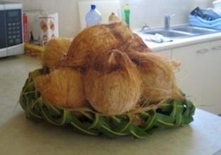 Basket of coconuts.