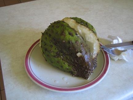 Apple cut open, Tonga.