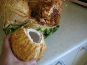 Coconut open.