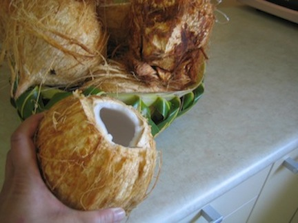 Coconut open.