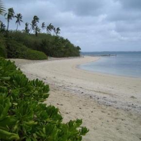 Tonga Living