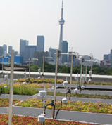 UoT_Daniel's_Architecture_Green_Roof_300px