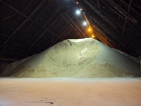 Mound of raw sugar.