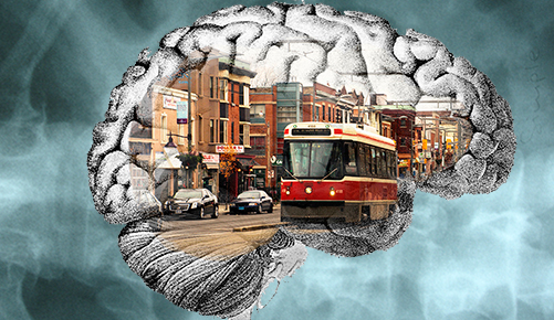 St. Clair polyglot brain.