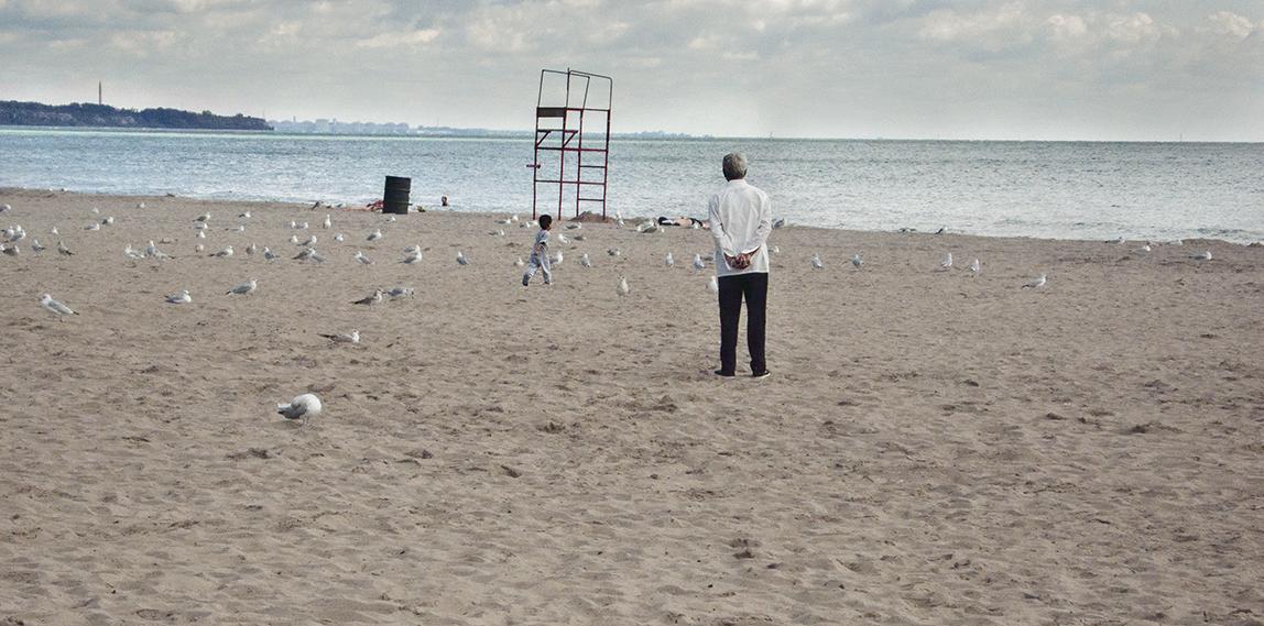 Boy chasing pigeons on the beach.
