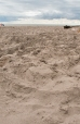 yesterday's sandcastle