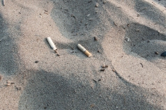 Cigarette butts in sand at Hanlan's beach.
