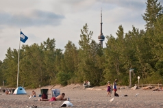 CN tower from Hanlan's beach.