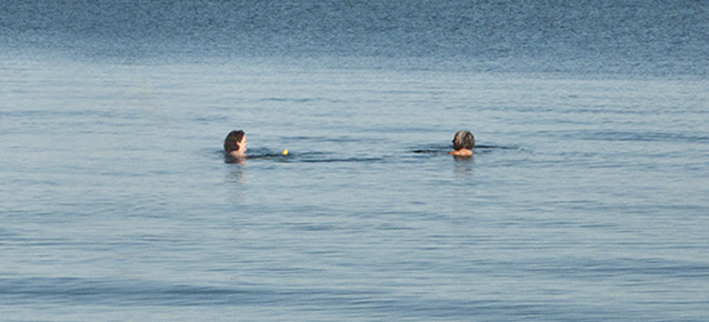 Swimmers in Lake Ontario.