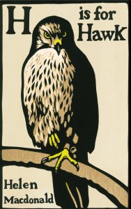 H is for Hawk cover.