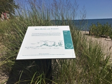 How dunes are formed sign.
