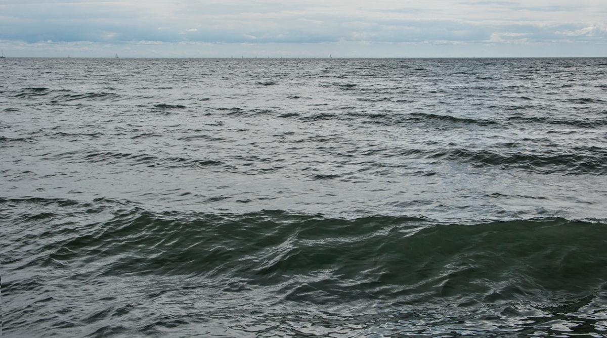Open water at Kew beach.