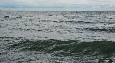Open water at Kew beach.