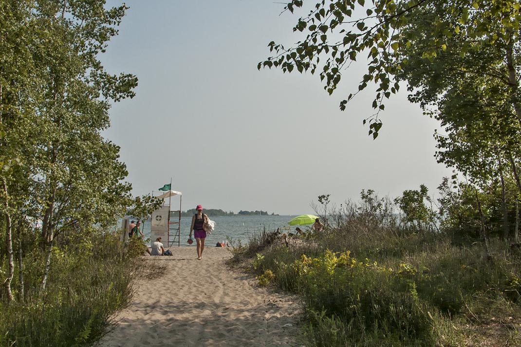 Path to Ward's island beach.