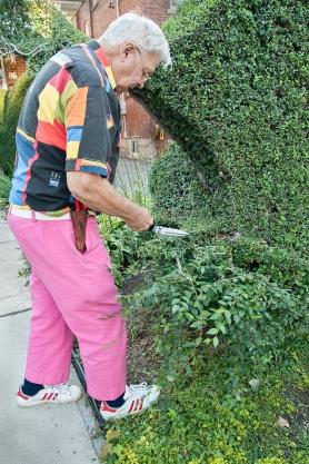 Tree artist