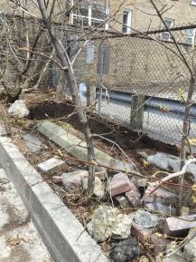 Concrete and bricks in laneway strip.