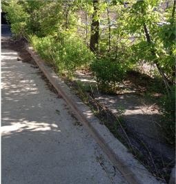 Laneway strip before clean-up.