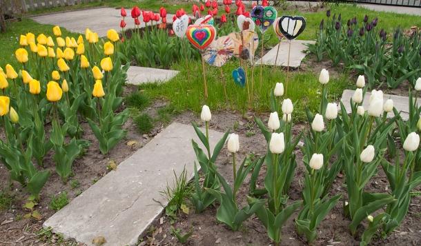 Medecine wheel garden
