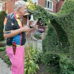 Tree artist and topiary.