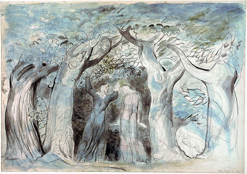 Dante illustration Dark Forest.