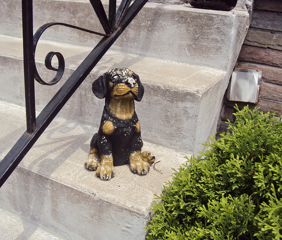 Dog statue.